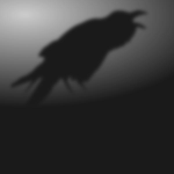 Ombre de corbeau (crédit Riusma pour La Garde de Nuit)