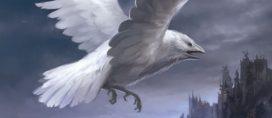Corbeau blanc approchant Peyredragon (Crédits : Sandara Tang, Fantasy Flight Games)
