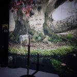 Activité photo avec Glace, devant l'arbre-cœur du bois sacré de Winterfell (crédits : Thistle).