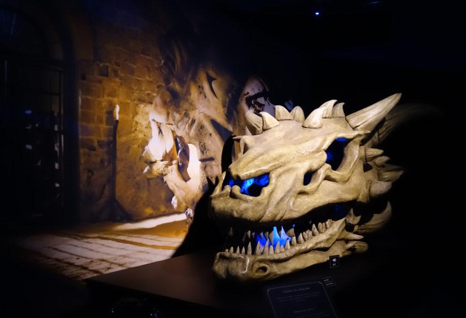 Crâne d'un mignon petit dragon (crédits : Thistle).