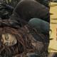 Sansa et Sandor, par Bubug ; montage Nymphadora