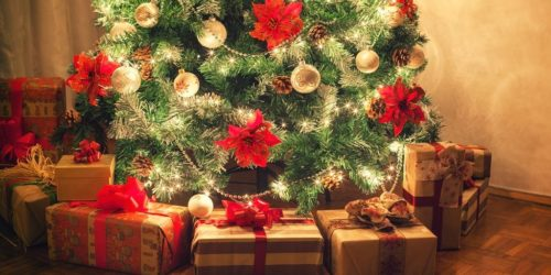 Recommandations de décembre : le livre à mettre au pied de tous les sapins !