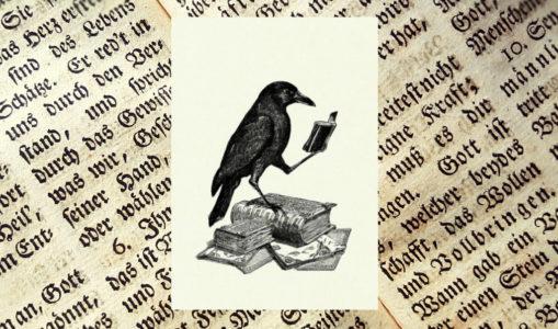 Recommandations de septembre : les romans d'apprentissage