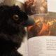 [On teste pour vous] Une pluie de magazines consacrés à Game of Thrones